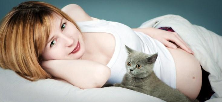 беременная девушка с кошкой