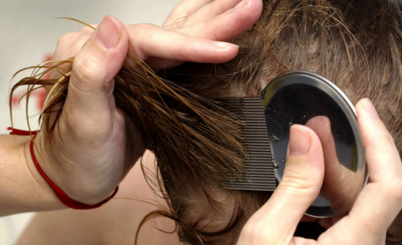 Могут ли появиться вши на голове на нервной почве от стресса
