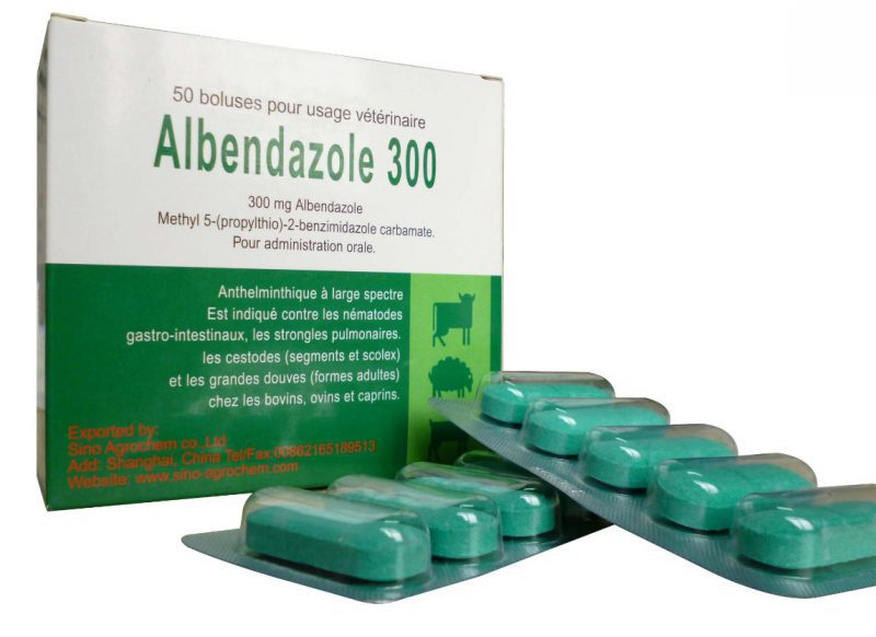 Albendazole For Pinworms