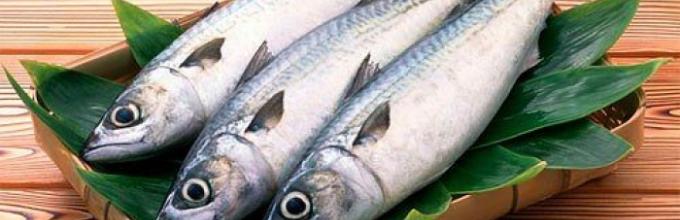 описторхоз у рыб