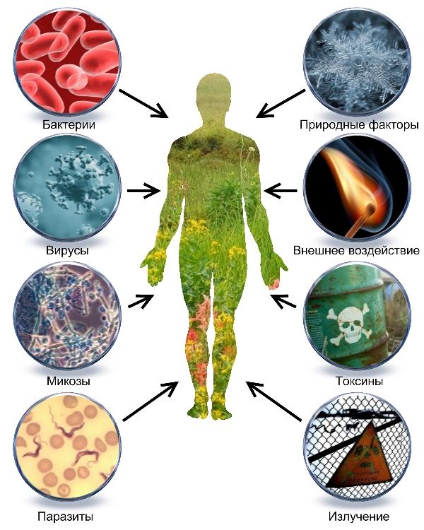 симптомы при заражении паразитами