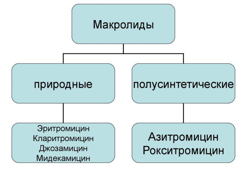 природные Макролиды от хламидоза