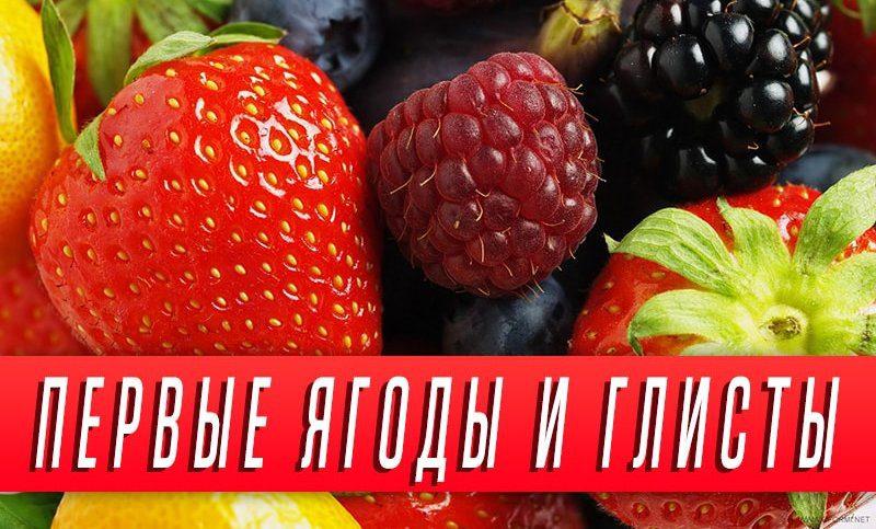 ягоды от глистов