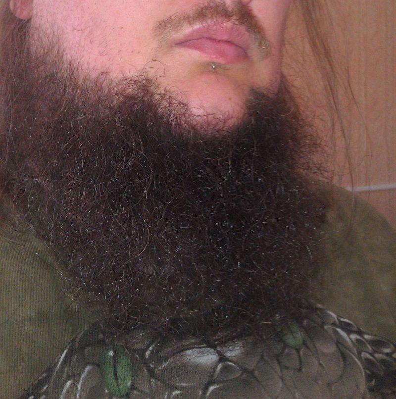 Площицы на бороде