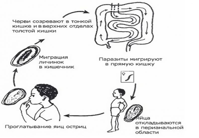 Суть заболевания