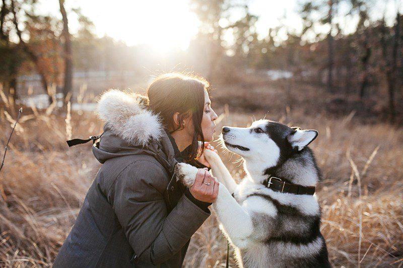 собака с хозяйкой на прогулке