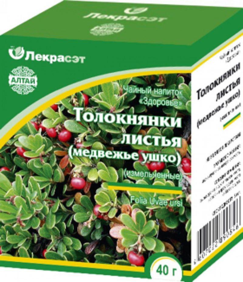 упаковка листьев толокнянки