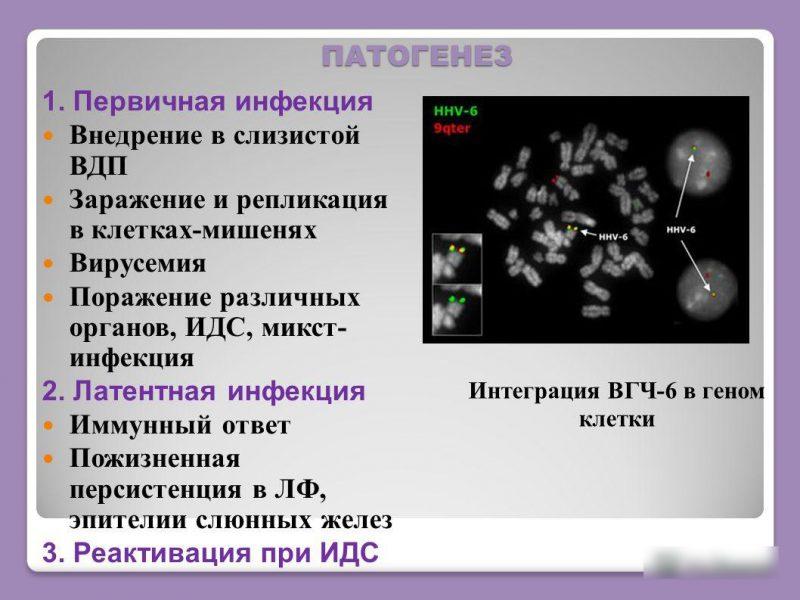 Вирус 6 типа у детей