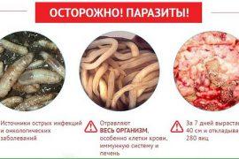 Чем опасны глисты для человека