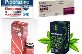 Лучшие препараты от паразитов