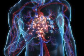 Симптомы и лечение респираторный хламидиоза