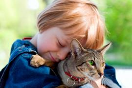 Может ли человек заразиться глистами от кошки?