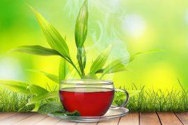 Монастырский чай правда или развод?