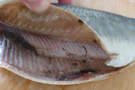 Опасные для человека глисты в рыбе