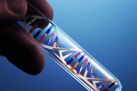 Что такое ПЦР анализ на хламидии