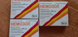 Инструкция по применению противогельминтного средства и можно ли пить Немозол для профилактики?