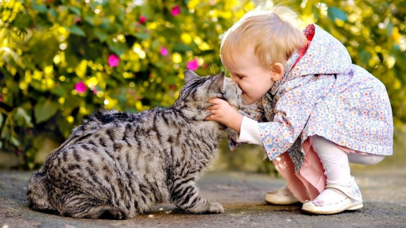 ребенок с животным