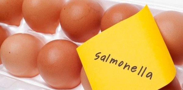 Чем опасна сальмонелла энтеритидис