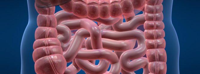 вещество абсорбируется в кишечнике и печени