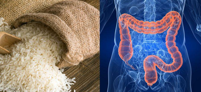 рис и кишечник