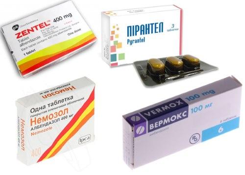 антигельминтные лекарства