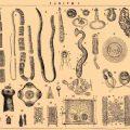 Виды глистов у человека с фото и описаниями